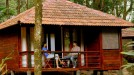 honeymoon resort in Laternstay resort wayanad