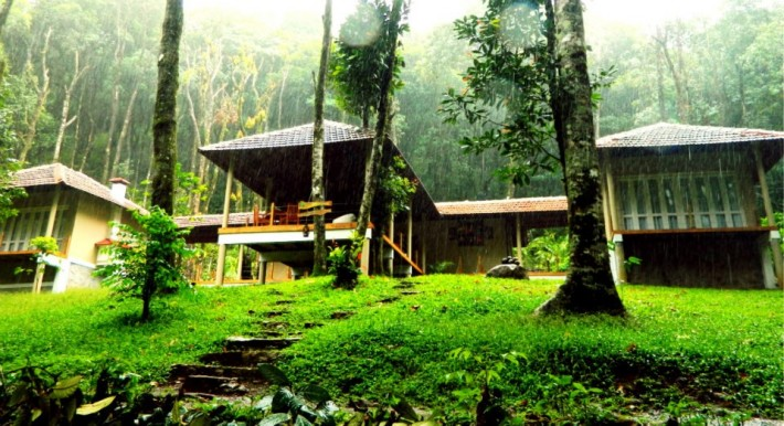 best forest resort in wayanad
