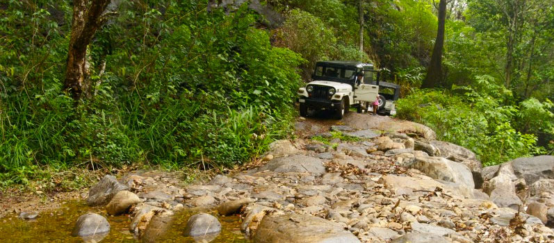 THE-DRIVE at Laternstay Resort Wayanad-Jeep drive
