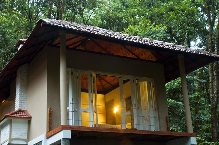 jungle stay in wayanad