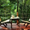 wooden cottages in Laternstay Resort Wayanad