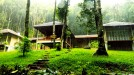 honeymoon resort in wayanad