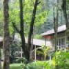 Laternstay villa in Wayanad