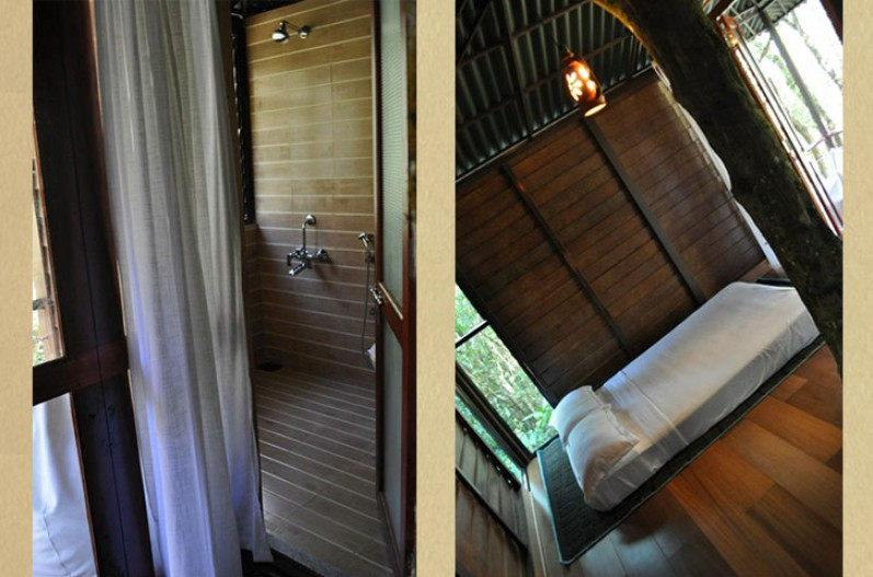 Laternstay tree house in Wayanad, Kerala