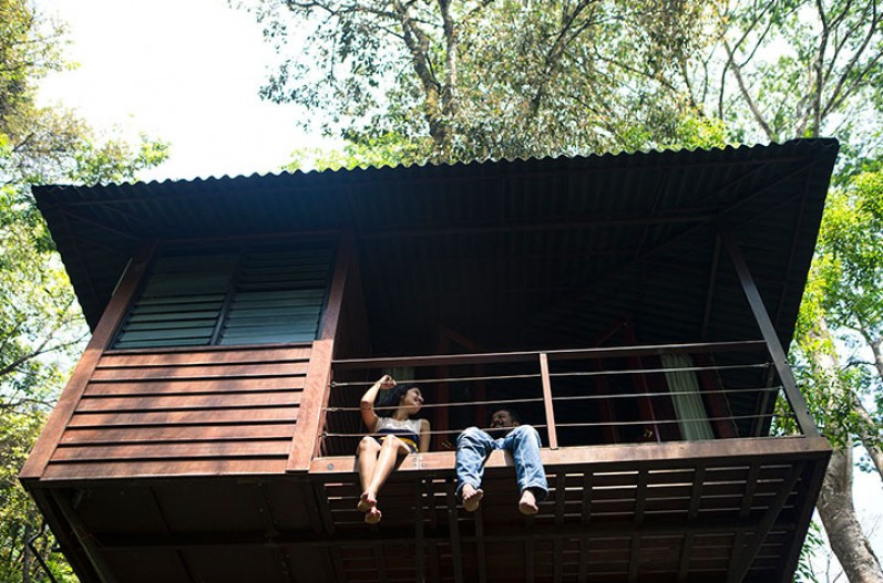 Laternstay tree house in Wayanad