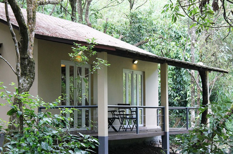 Forest resort - Laternstay Resort in Wayanad, Kerala