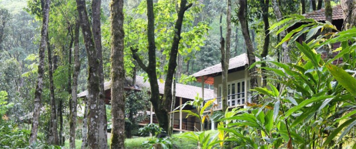 wildlife resort in Wayanad, Kerala