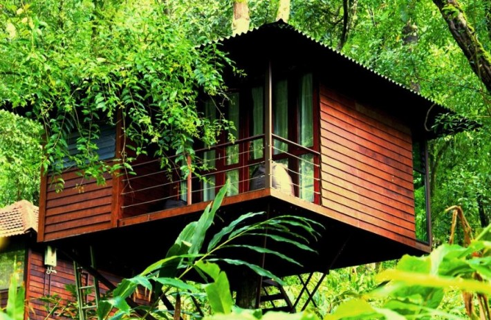 resort in Wayanad, Lanternstay