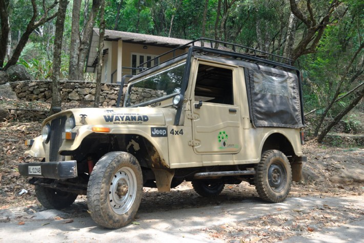 The interesting activities which are attractive in Wayanad during summer