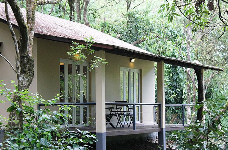 Forest resort - Laternstay Resort in Wayanad, Kerala